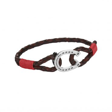 Horseshoe-jewellery-steel-Clydesdale-ruby-brown-the-fortunate-one-side