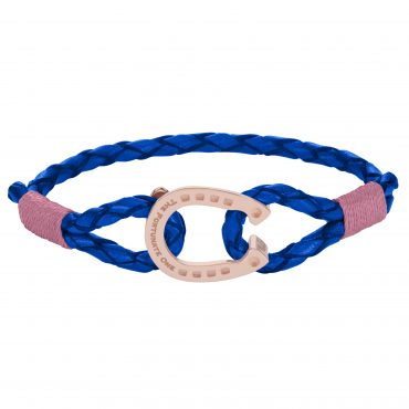 Tinker - Rose Rose Ride-Against-Cancer-The-Fortunate-One-Front-Horseshoe - font