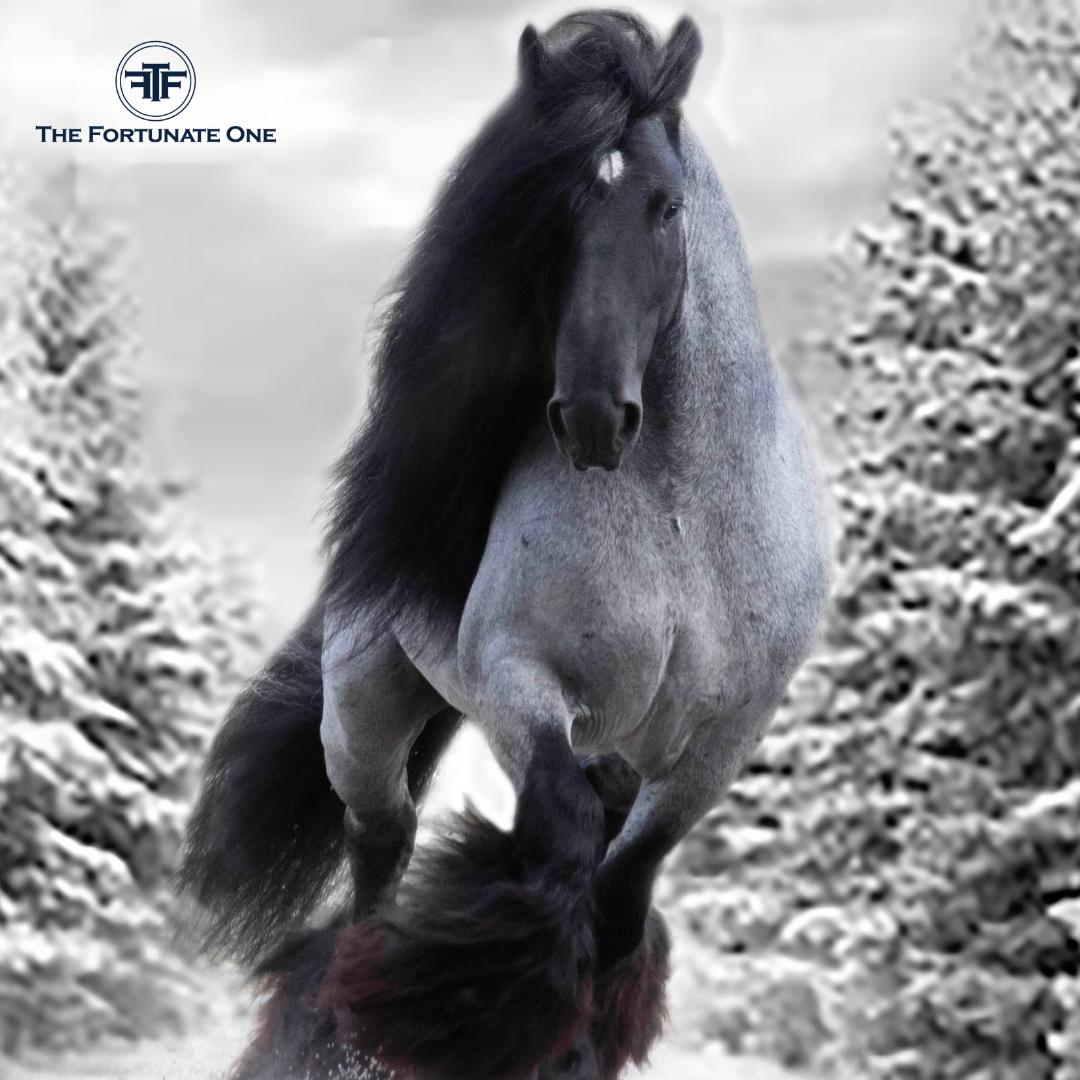TINKER SPIRIT AND SYMBOLISM-Horse
