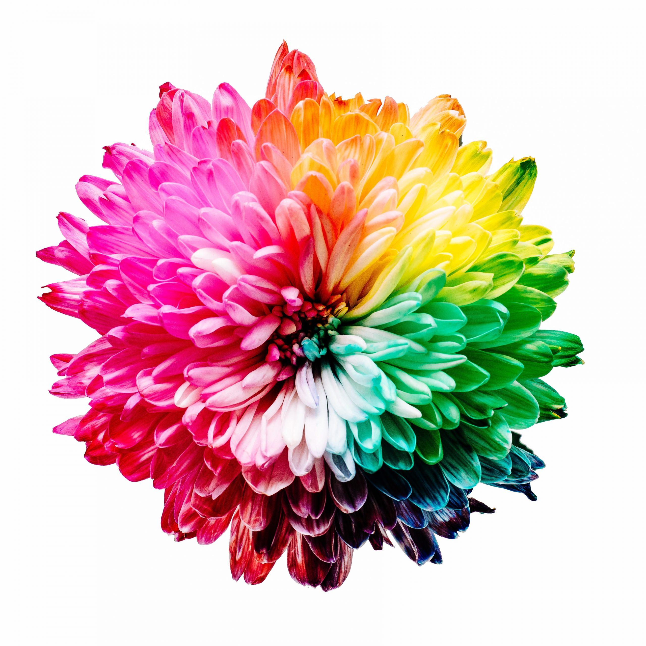 Colour psychology